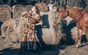 Picture girl, pose, style, horse, horse, hay, Anton Kharisov, Maria Bashmakov