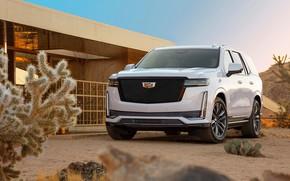 Picture Cadillac, Escalade, Sport, Platinum, 2020