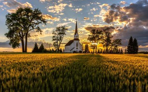 Picture field, summer, morning, temple