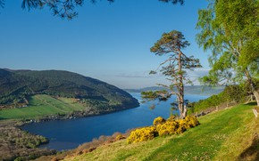 Picture trees, lake, hills, slope, Scotland, Scotland, Scottish Highlands, Loch Ness, Scottish highlands, Loch Ness