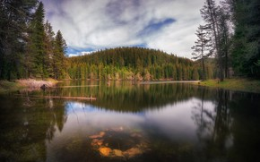 Picture nature, lake, the kalodce