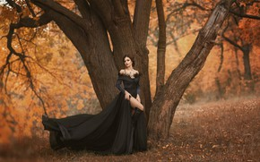 Picture autumn, girl, trees, pose, dress, beautiful, Irina Chernyshenko