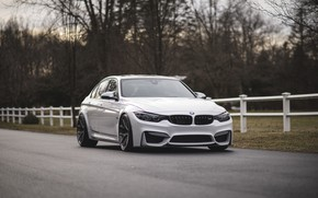 Picture BMW, White, F80, Sight, Hedge