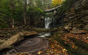 Picture autumn, trees, bridge, river, stones, waterfall, cascade, West Virginia, West Virginia, Elakala Falls, Blackwater Falls …