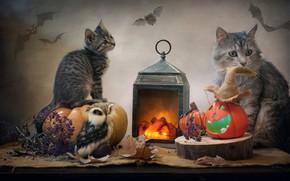 Picture animals, cat, leaves, owl, lantern, pumpkin, fabric, Halloween, cub, kitty, burlap, Kovaleva Svetlana, Svetlana Kovaleva