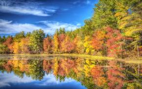 Picture autumn, forest, trees, lake, reflection, New Hampshire, New Hampshire, Nashua, Nashua