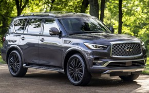 Picture machine, forest, trees, grey, SUV, Infinity, side, wheel, QX80, big car, Infiniti QX80 Limited, Infinity …