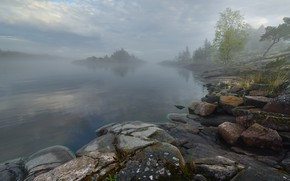 Picture the sky, clouds, trees, fog, stones, shore, morning, haze