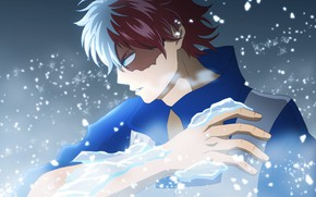 Picture ice, My Hero Academia, Boku No Hero Academy, Todoroki Shoto, My Hero Academy