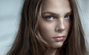 Picture portrait, sponge, Liana Bragin, Yuri Leo