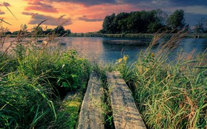 Picture summer, the sky, grass, sunset, lake, pond, thickets, shore, Board, the evening, bridges, pond