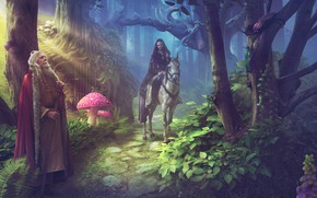 Picture forest, girl, the elder, photoart