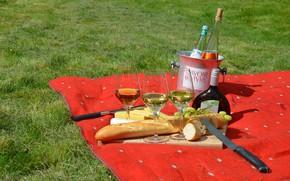 Picture Board, wine, cheese, bread, knife, glasses, picnic, grapes