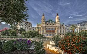 Picture flowers, palm trees, building, Monaco, Monte Carlo