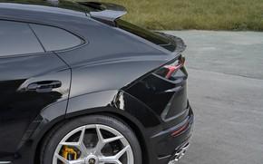 Picture Lamborghini, the rear part, crossover, Urus, Novitec, 2019