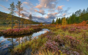 Picture autumn, grass, landscape, mountains, nature, forest, Kolyma, Maxim Evdokimov, the lake of Jack London