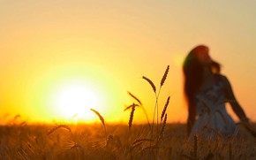 Picture field, summer, girl, morning, silhouette, ears