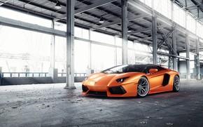 Picture Lamborghini, Orange, Predator, Aventador, VAG, Sight
