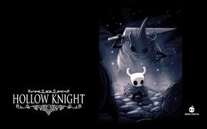 Picture Hollow Knight, Team Cherry, Watcher Knights