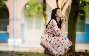 Picture girl, pose, sweetheart, dress, Asian, sitting, bokeh