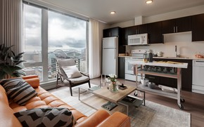 Picture interior, kitchen, living room, Urban living room