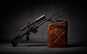 Picture weapons, background, optics, canister, sniper rifle