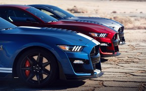 Picture machine, coupe, sports car, Ford Mustang Shelby GT500