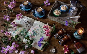 Picture flowers, style, glasses, binoculars, book, still life, cappuccino, anemones, cupcakes