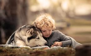 Picture animal, dog, boy, friends, curls, child, husky, dog, Agi Rygula