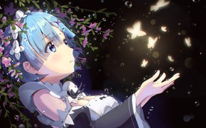 Picture drops, night, girl, flowers, blue hair, moths, Life from scratch in an alternate world, Rem …