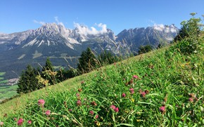Picture The sky, Mountains, Grass, Slope, Clover