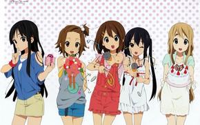 Picture gift, bouquet, Schoolgirls, friend, congratulations, polka dot, Mio Akiyama, Light music, K-on!, Azusa Nakano, Tsumugi …