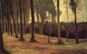 Picture trees, Vincent van Gogh, Early paintings, Edge of a Wood