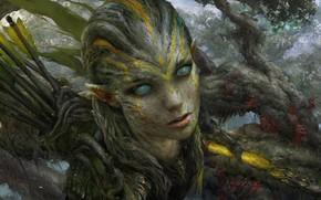 Picture elf, arrows, hunter, blind eyes