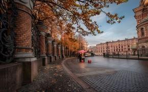 Picture autumn, branches, the city, Park, street, building, home, fence, Peter, Saint Petersburg, temple, bridge, The …