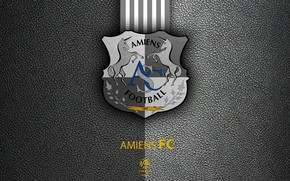 Picture wallpaper, sport, logo, football, Ligue 1, Amiens