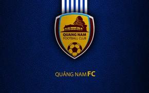 Picture wallpaper, sport, logo, football, Quang Nam