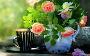 Picture flowers, bright, roses, bouquet, mug, pitcher, still life