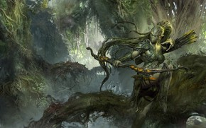 Picture forest, Ranger, dongbiao lu, bow and arrow