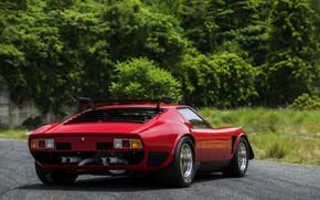 Picture Lamborghini, back, 1976, Miura, Miura SVR