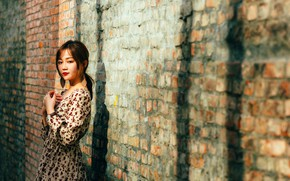 Picture look, pose, model, portrait, brick, makeup, dress, hairstyle, brown hair, Asian, is, bokeh, the wall