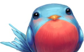 Picture bird, blue, thick