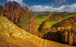 Picture autumn, the sky, the sun, clouds, trees, hills, field, Switzerland, forest, meadows, Solothurn, Aedermannsdorf