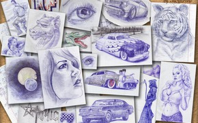 Picture animals, people, drawings, cars, Board of memories