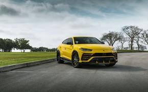 Picture Lamborghini, Predator, Yellow, Evening, Urus, Demon, VAG