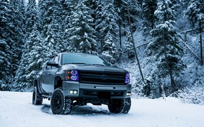 Picture winter, snow, trees, Chevrolet, SUV, trees, pickup, winter, snow, SUV, pickup truck