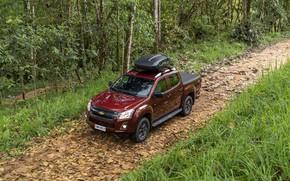 Picture road, forest, Chevrolet, pickup, Isuzu, 2020, D-Max, 2021, Hi-Ride