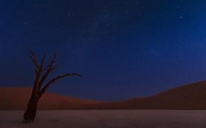 Picture the sky, desert, stars, dunes, sky, desert, stars, dunes, Namib, Ali Khataw, namib