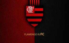 Picture wallpaper, sport, logo, football, Brazilian Serie A, Flamengo RJ