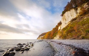 Picture autumn, beach, trees, pebbles, stones, rocks, shore, pond